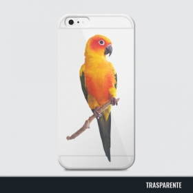 prt-giove-cover-iphone7.jpg